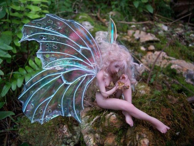 Fairy dolls - 16