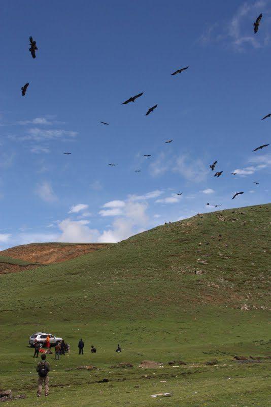 Burials in Tibet. NOT FOR SENSITIVE SOULS! - 05
