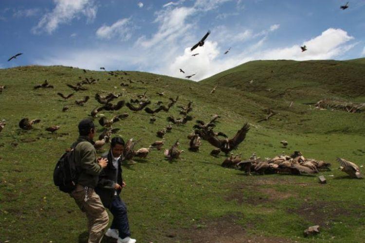 Burials in Tibet. NOT FOR SENSITIVE SOULS! - 19