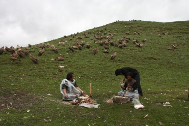 Burials in Tibet. NOT FOR SENSITIVE SOULS! - 48