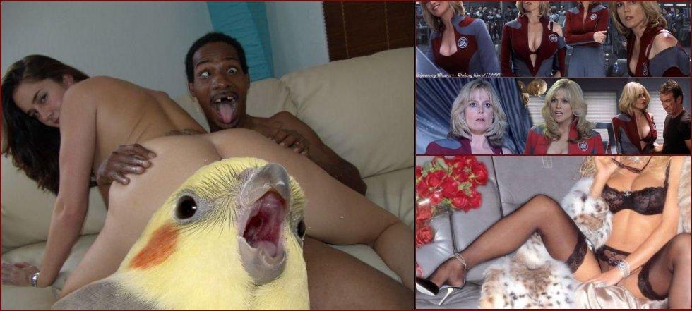 Daily erotic picdump - 124