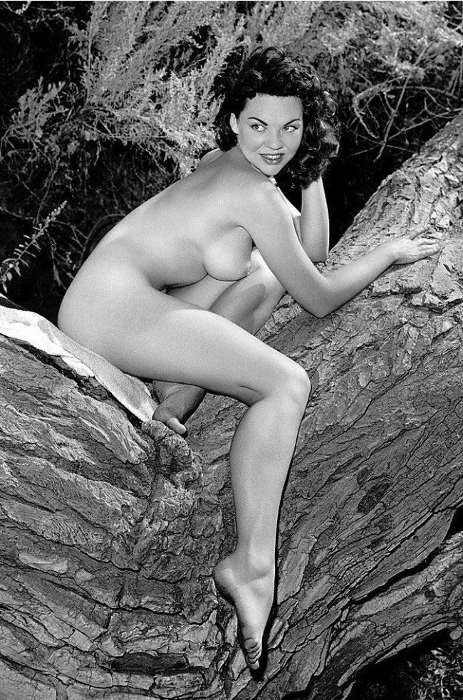 Large collection of erotic photos from the past - 45
