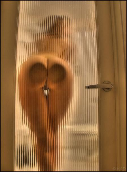 Behind glass - 22