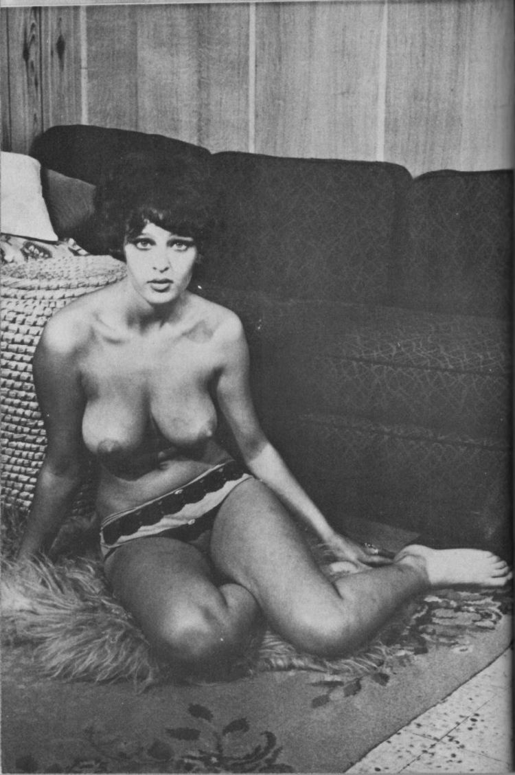 Selection of retro erotica - 14