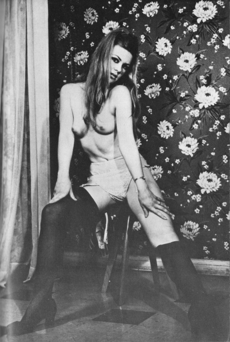 Selection of retro erotica - 16