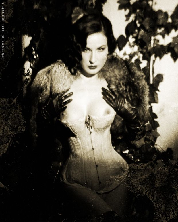 Big collection of erotic photos of burlesque queen Dita von Teese - 09