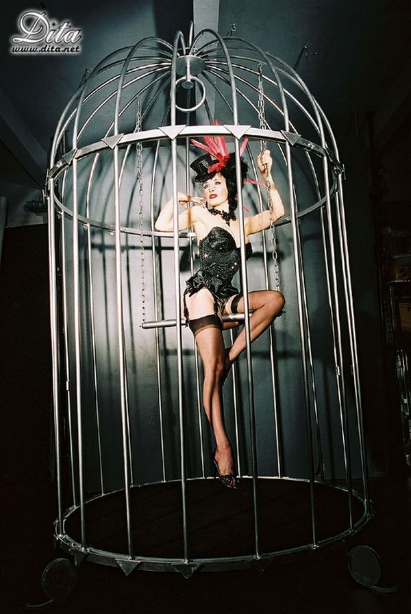 Big collection of erotic photos of burlesque queen Dita von Teese - 12