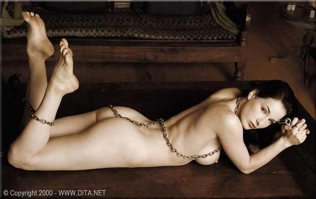 Big collection of erotic photos of burlesque queen Dita von Teese - 49