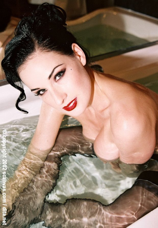 Big collection of erotic photos of burlesque queen Dita von Teese - 50
