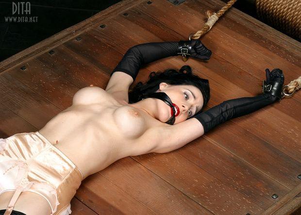 Big collection of erotic photos of burlesque queen Dita von Teese - 62