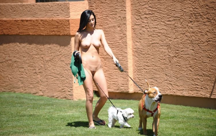 Naked ladies with dogs - 02