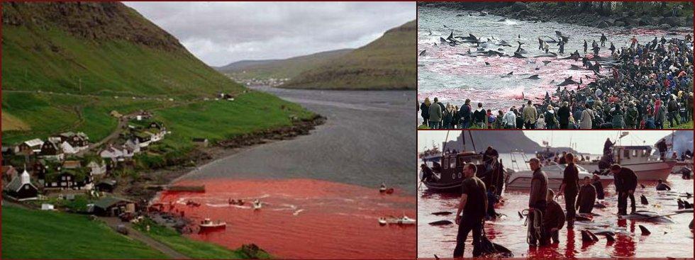 Casually Faroe islands girls naked