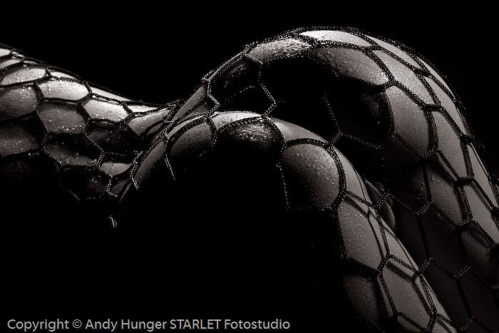 Black and white erotica of photographer Andy Hunger - 07