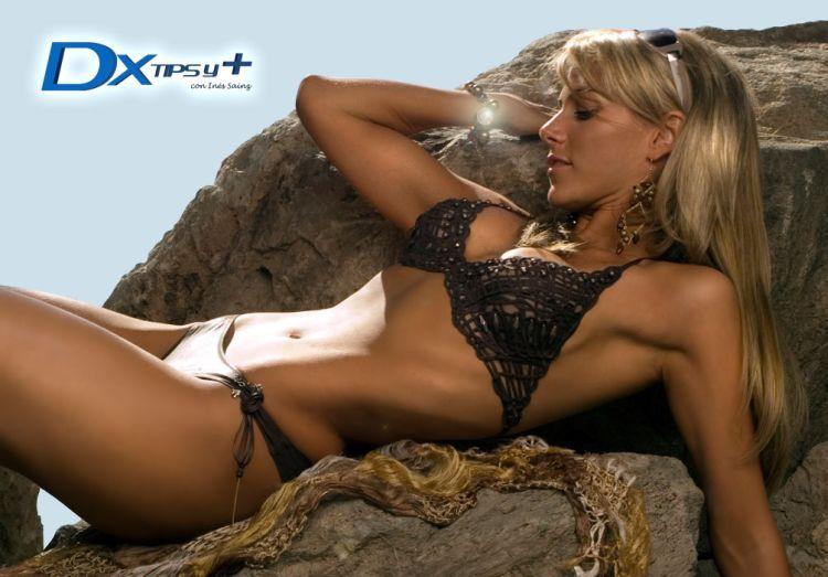 The sexiest sports reporter Ines Sainz  Gallo (23 pics)